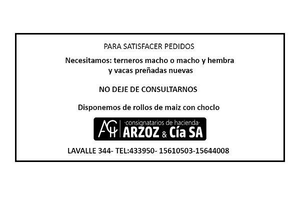 arzoz.jpg