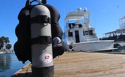 Photo roator traveler bcd-back at dock
