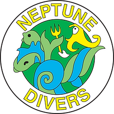 ND_logo color.png