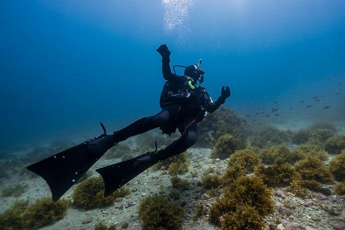 Defiant fins on Diver.jpg
