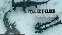 Paul de Gelder - Host of Shark Week and Diving's Hero
