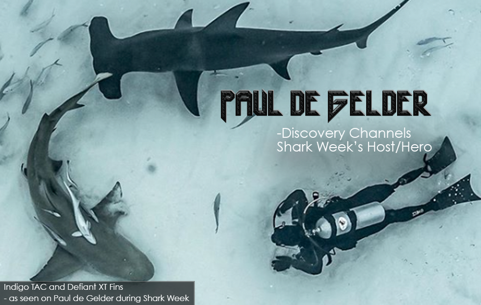 Paul de Gelder - Discovery Channel's Shark Week Host on Indigo Industries Fins