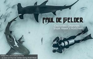 Paul de Gelder - Discovery Channel's Shark Week Host on Indigo Industries Fins