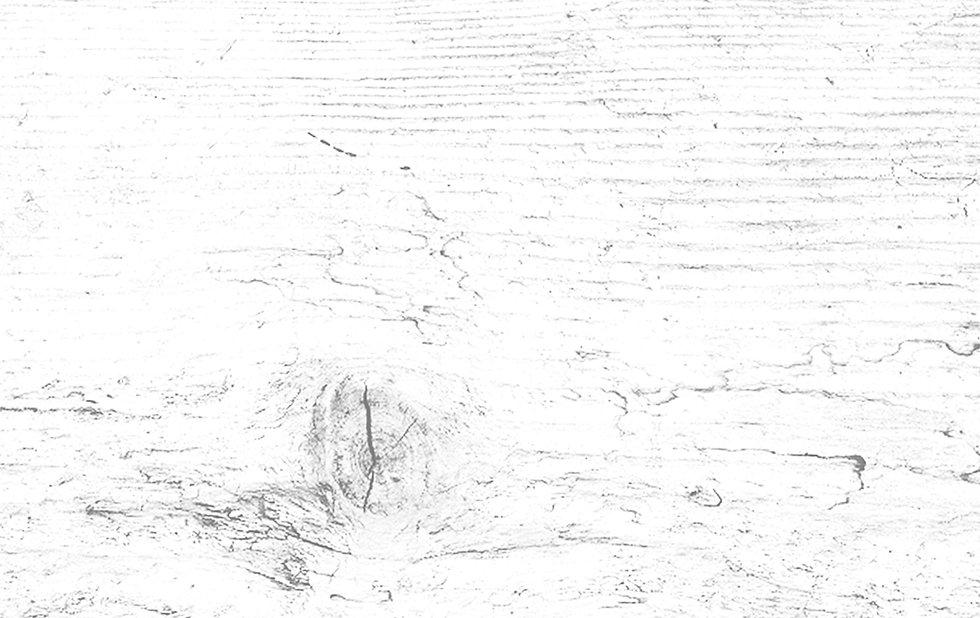 WoodTexture_edited.jpg