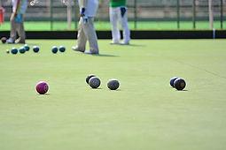 Bowls Pic.jpg