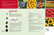Libfer_2.jpg