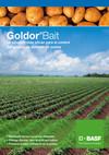 GoldorBait_1.jpg