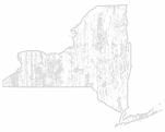 location-state-bg_NY.png