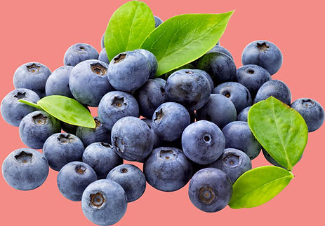 fruit4.jpg