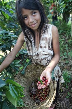 Coffee Farmer Girl