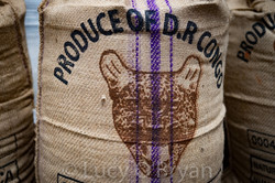 Product of Congo