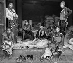 Congo Coffee Workers