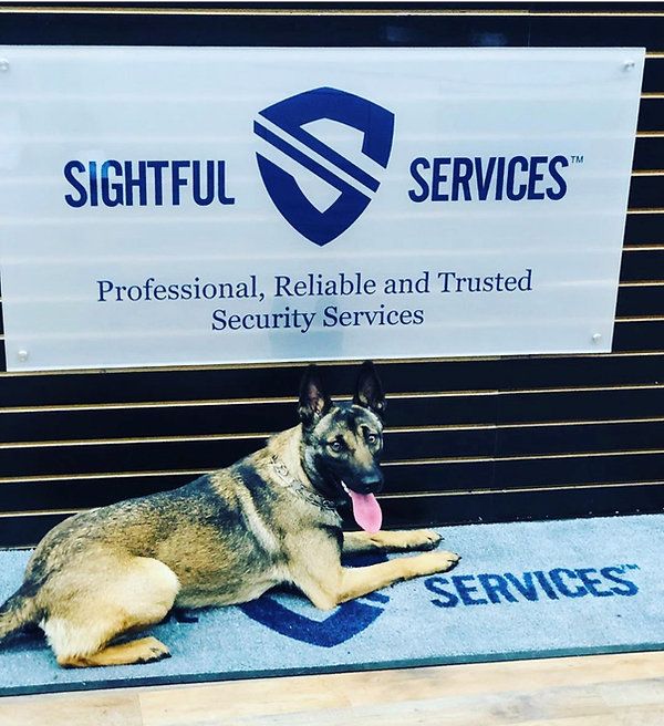 K9 Services New York