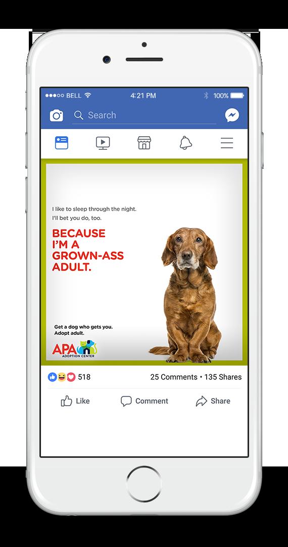 APA Facebook 1-UP SQUEAKER.png