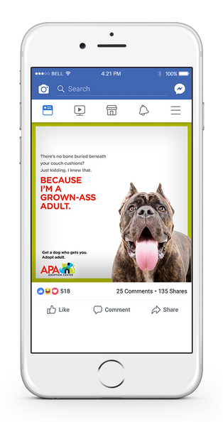 APA Facebook 1-UP BONE COUCH.png