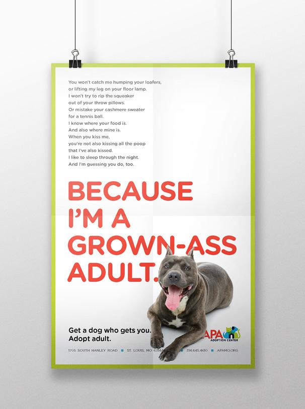 APA Poster 1-UP Mockup LAMP.jpg