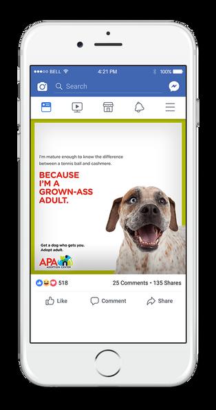 APA Facebook 1-UP CASHMERE.png