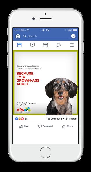 APA Facebook 1-UP FOOD.png