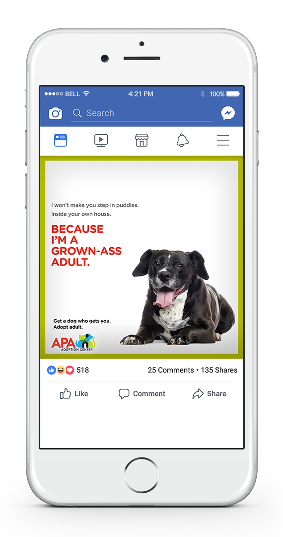 APA Facebook 1-UP PUDDLES.png