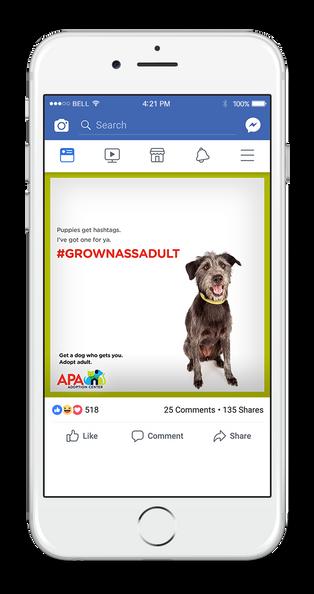 APA Facebook 1-UP HASHTAG.png