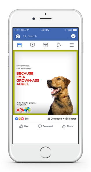 APA Facebook 1-UP BLADDER.png