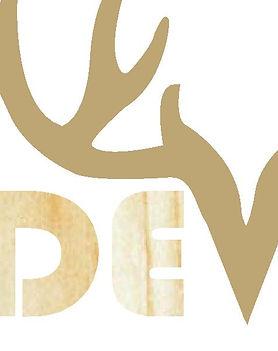 Blonde viking logo.jpg