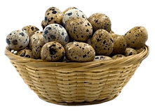 basket-of-quail-eggs_edited_edited.png