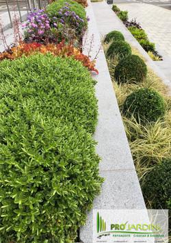 plantation zen plate-bandes