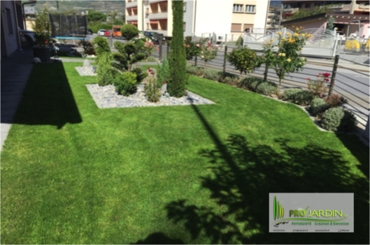 PROjardin Paysagiste creations & enretiensn Espace vert Jardins Valais Chippis massif pelouse plante