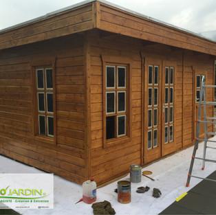 Cabine de jardin / abri Renovation