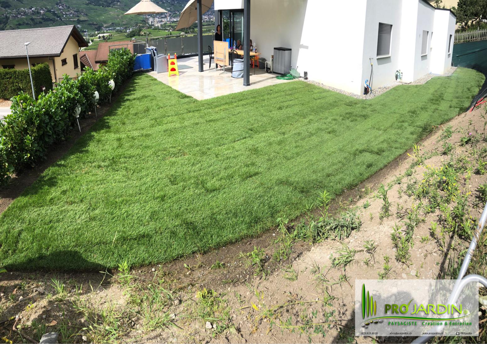 nouvelle pelouse en 24 heures _ Chalais.