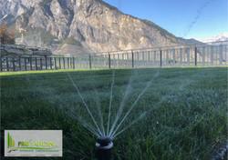 irrigation _ Hunter MP rotator _ arrosag