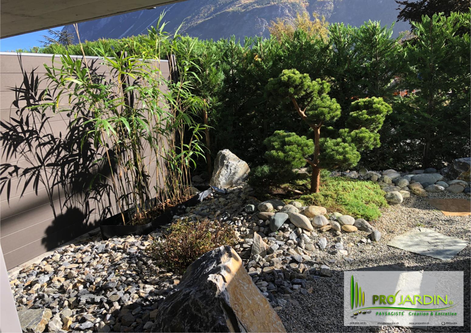 jardin exotique _ minéral-végétale _ Sie