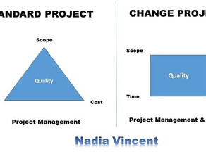 Change Project? Drop the Project Management Triangle