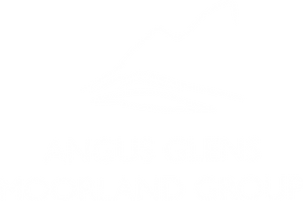 AGMG Logo - white.png