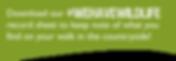 website sheet banner angus.png