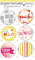 SM badges.png