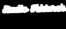 STlogoWHITE
