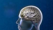 Depressed-Brain.jpg
