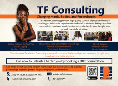 TF Consultant Direct mailer.jpg
