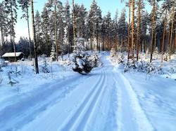 Finlande sous la neige   Lac Saïmaa