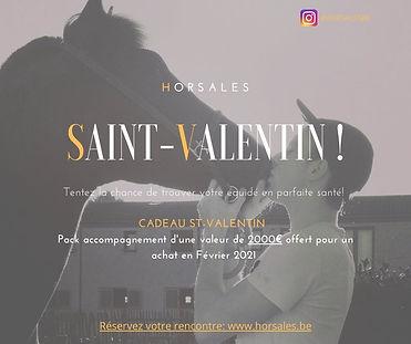Saint-Valentin !.jpg