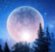 Full Pink moon.jpeg