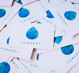 true north brew co reward cards