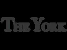 HJ TNBC website logo-14.png