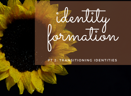Identity Formation Pt 2: Transitioning Identities