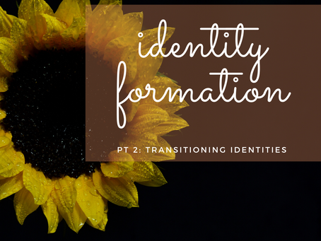 Identity Formation Pt 2: Transitioning Identities
