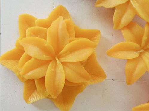 Fleur de lys avec recharge