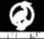 CEF_Logo_2020_Basic_WHITE.png