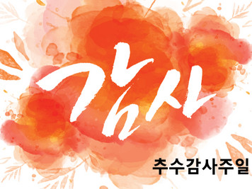 2019 추수감사절 Thanksgiving Day